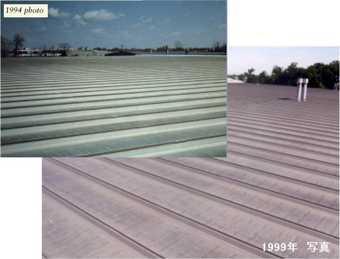 アップルトン、WI ガルバリウム鋼板屋根