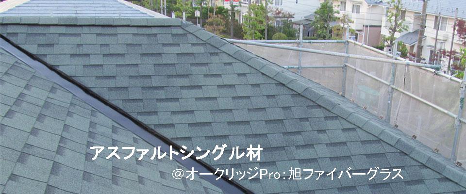 77平米屋根の家画像