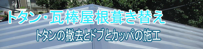トタンの屋根葺き替えタイトル画像